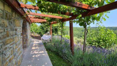 Istrske hiše Padna - pogled na teraso