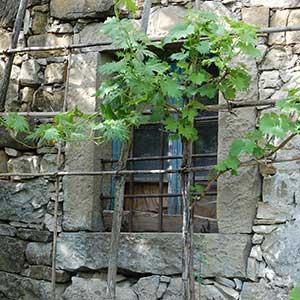 Istra - Destinacija