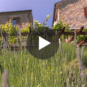 Predstavitveni video Istrske hiše Padna